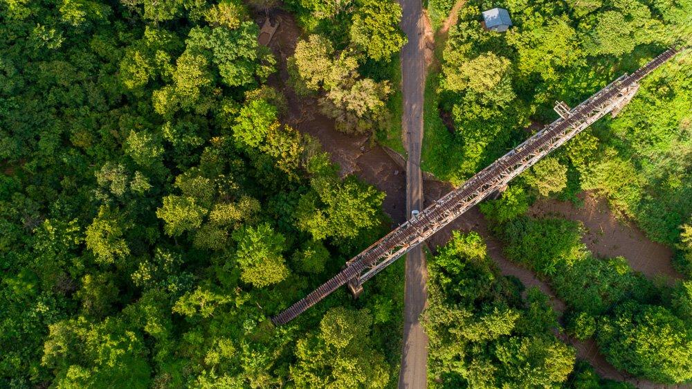 Ecotoerisme hand in hand met bosbeheer