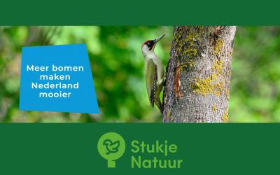 Introducing: StukjeNatuur